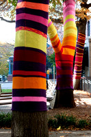 Suzanne Tidwell and Knitted Trees